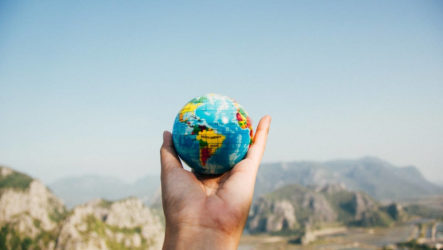 Сколько вегетарианцев в мире? Статистика по странам и оценка ситуации