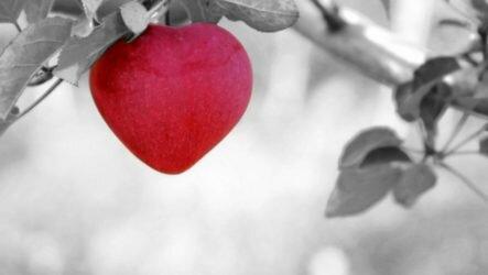 О любви и смысле жизни. Какова роль любви в жизни человека?
